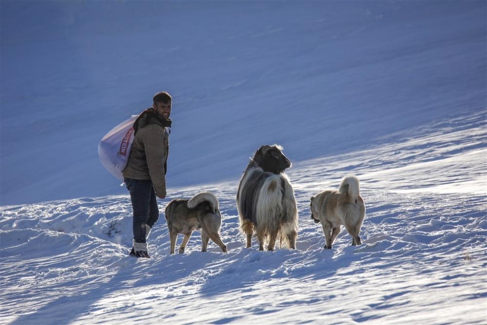 Köylülerin kış mesaisi galerisi resim 10