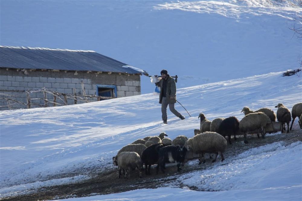Köylülerin kış mesaisi galerisi resim 5