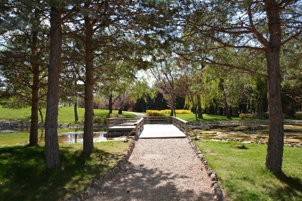 İlkbahar Japon Bahçesi'ne güzellik kattı galerisi resim 9