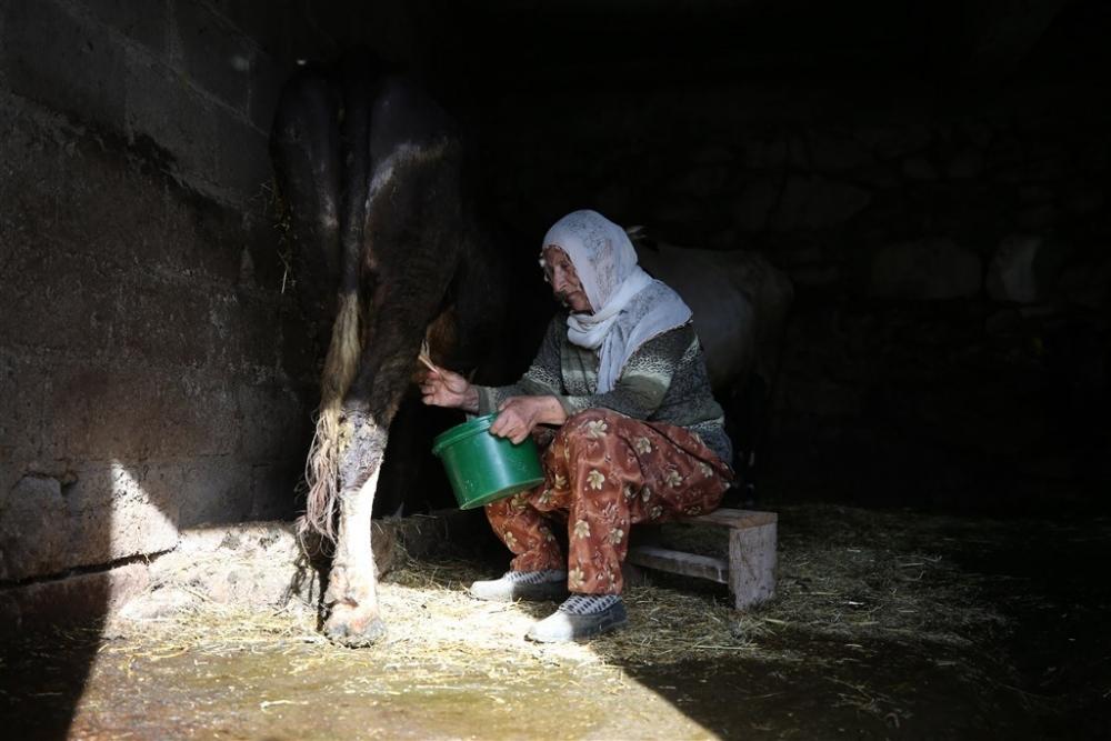 Ege'de bir Karadeniz köyü galerisi resim 6