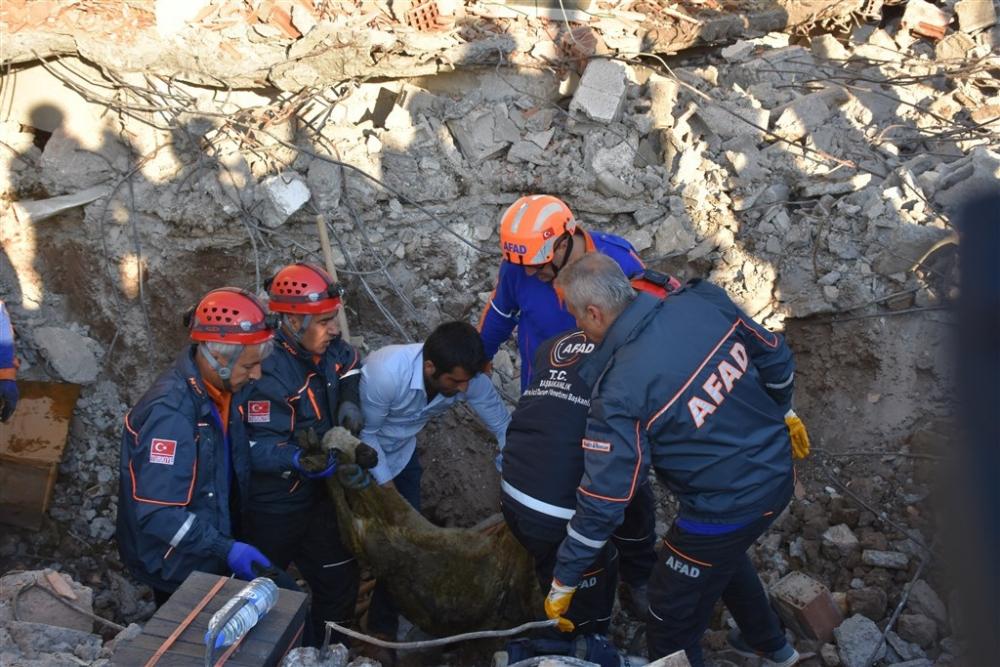 Adıyaman'da 5,1 büyüklüğünde deprem galerisi resim 2