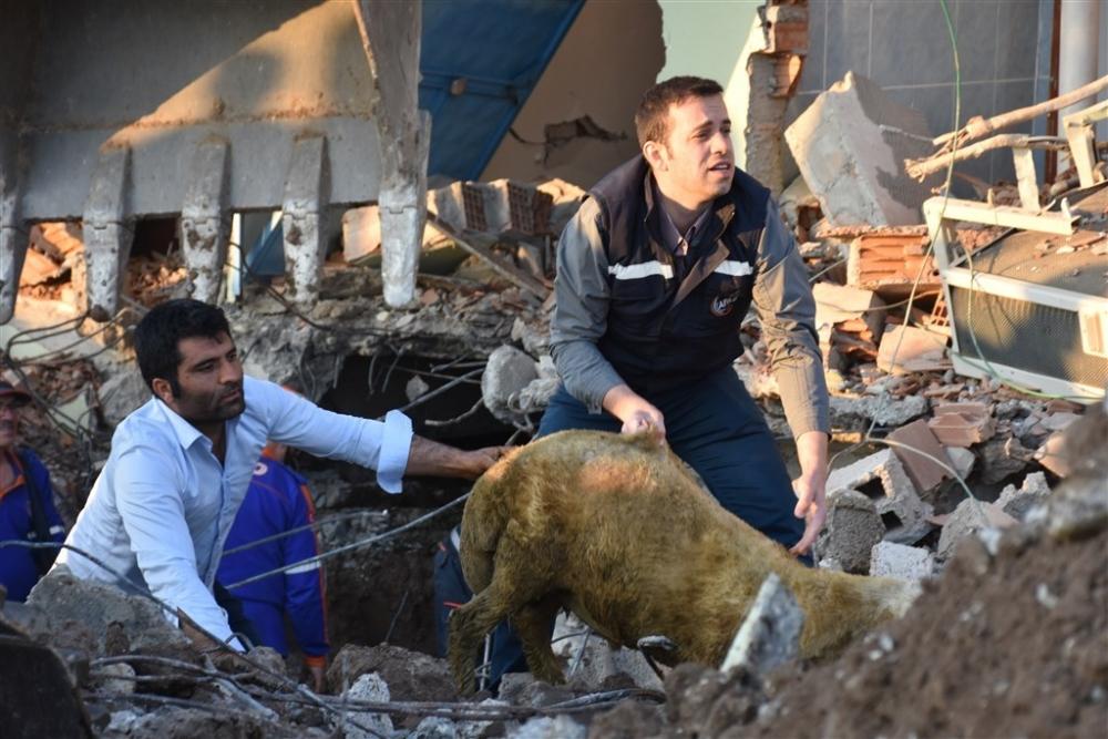 Adıyaman'da 5,1 büyüklüğünde deprem galerisi resim 5
