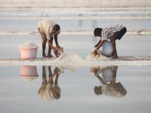 Bombay'da tuz hasadı