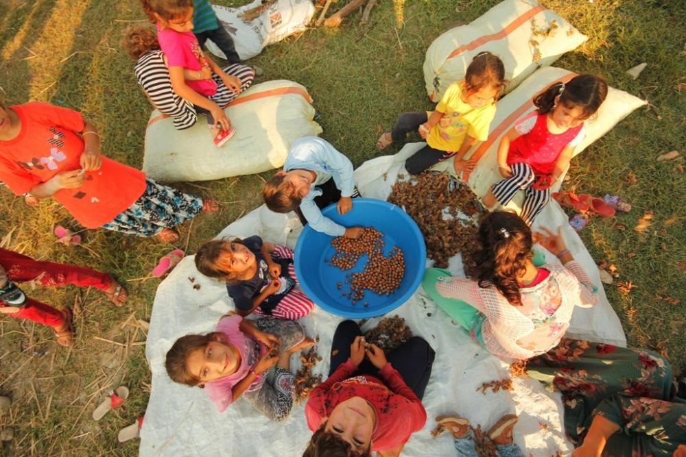 """Çadırlarda geçen bir ömür """"Mevsimlik işçi çocukları"""" galerisi resim 1"""