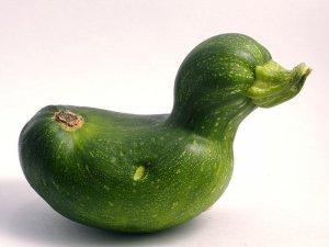 Görenleri şaşırtan meyve ve sebzeler