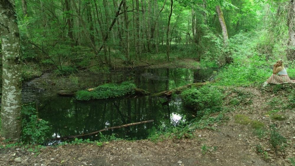 İğneada Longoz Ormanları'nda görsel şölen galerisi resim 20