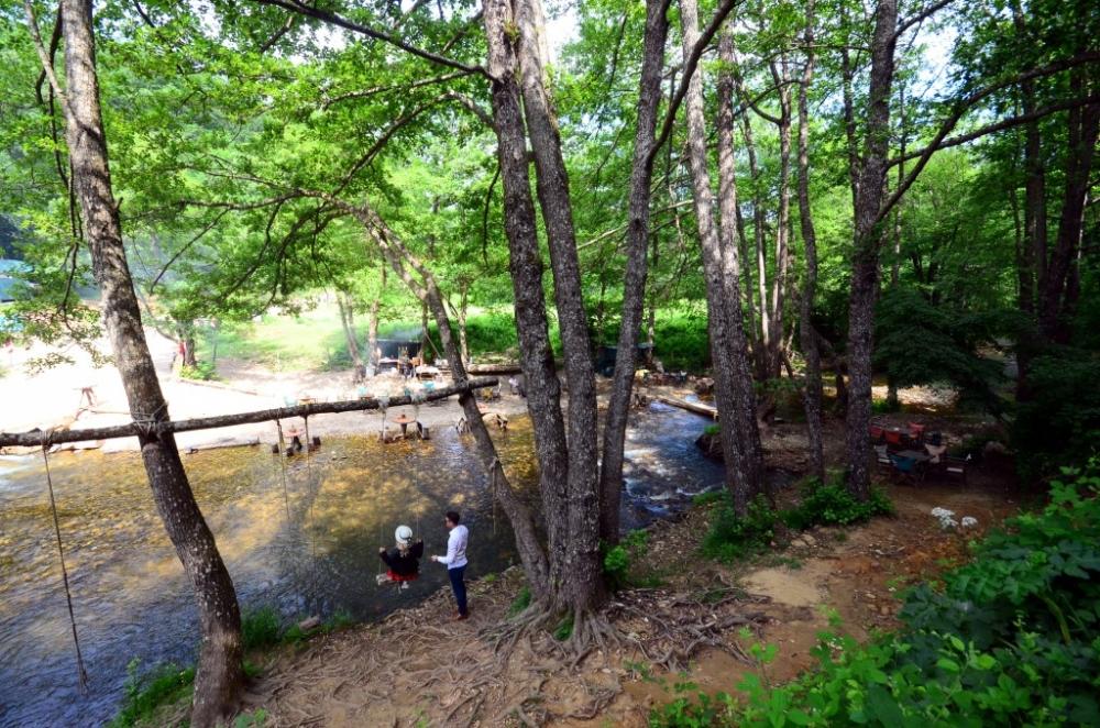 İğneada Longoz Ormanları'nda görsel şölen galerisi resim 9