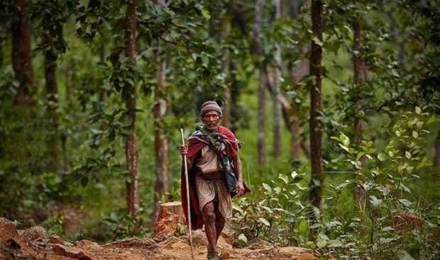 Raute dünyanın en ilkel kabilesi: Kabilede bir öldüğü zaman... galerisi resim 10