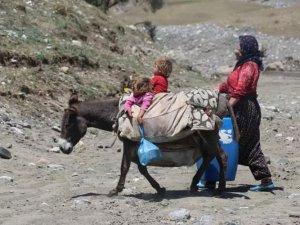 """Göçer kadınların eşek sırtında zorlu """"süt"""" yolculuğu"""