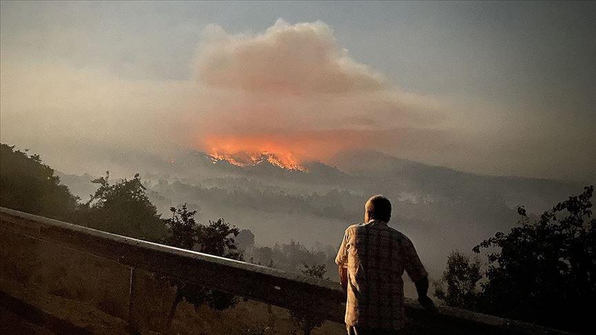 Ankara Nallıhan'da orman yangını galerisi resim 1