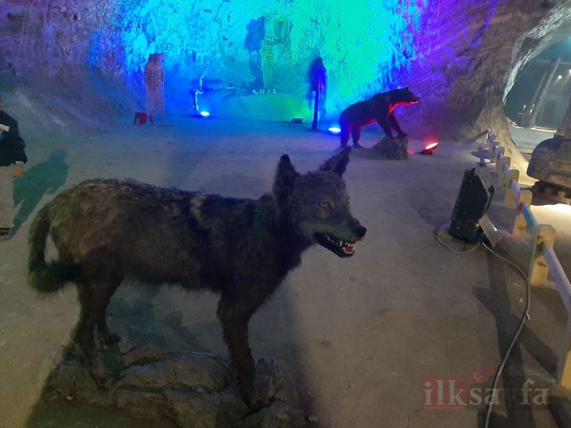 Bu mağarada virüs yok! galerisi resim 1