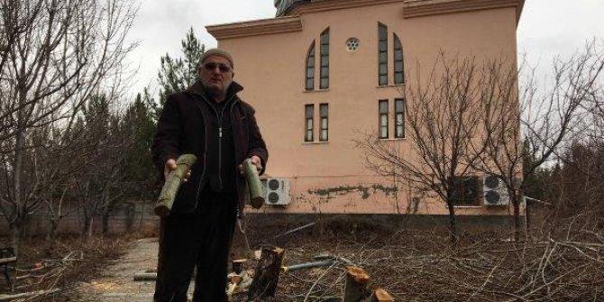 Cemaate kızdı ağaçları kesti