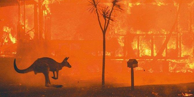 Yangın dünyayı tehdit ediyor