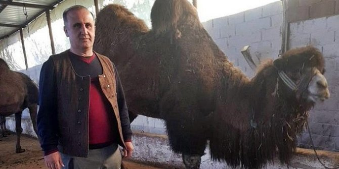 """Avustralya'daki develere talibim"""