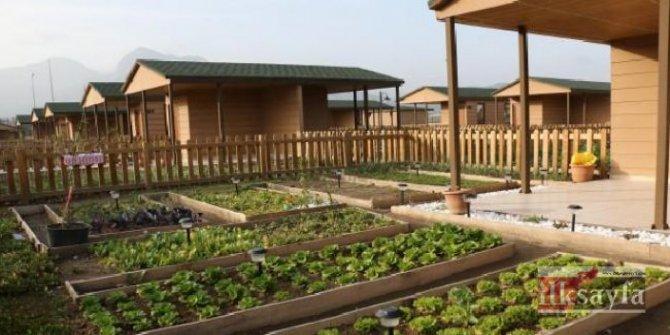 Tarım Bakanlığı'ndan hobi bahçesi anketi