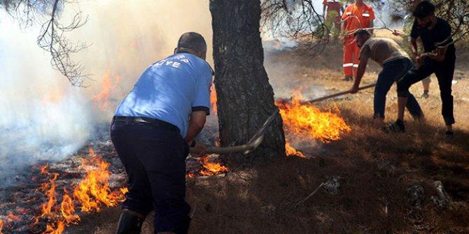 Orman yangınına kaymakam ve vatandaşlar da müdahale etti