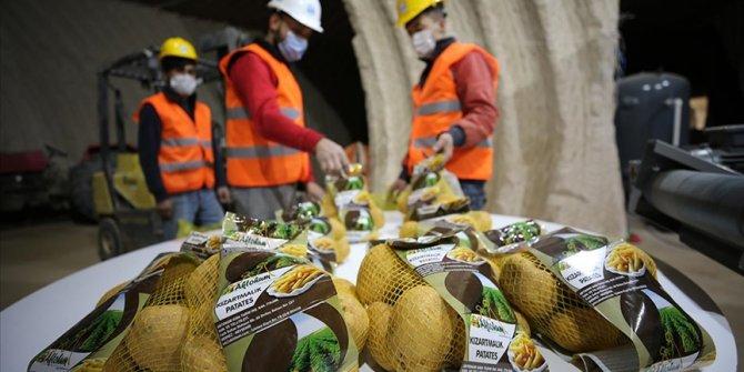 Nevşehir'de laboratuvarda analiz edilen patates pişirme amacına göre paketleniyor