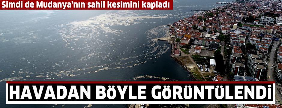 Deniz salyasıyla kaplanan Mudanya Yat Limanı, havadan görüntülendi
