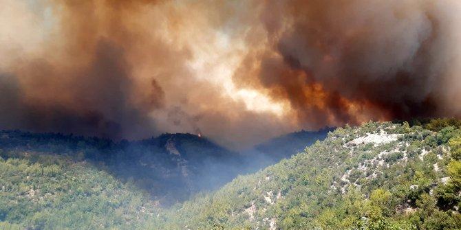 Manavgat'ta 4 noktada orman yangını
