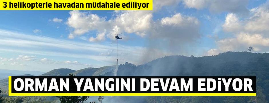 Balıkesir'in Edremit ilçesinde çıkan orman yangınına müdahale ediliyor