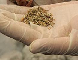 Büyükşehir'e Uyuşturucu Soru Önergesi