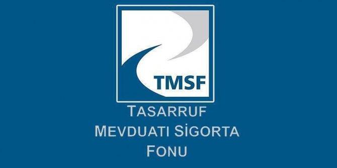 TMSF, Dumankaya şirketlerinin tasfiyesine karar verdi