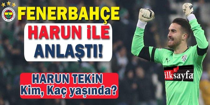 Fenerbahçe'nin yeni kalecisi Harun Tekin kimdir, kaç yaşında, boyu kaç, kilosu ne, nereli?