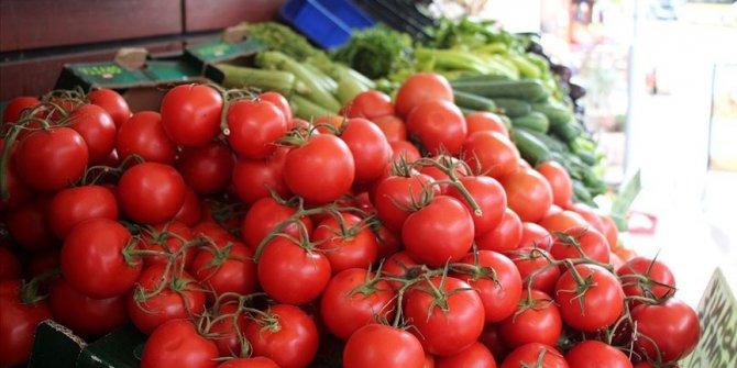 Türkiye en çok yaş meyve ve sebzeyi Rusya'ya sattı