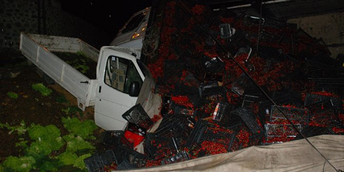Tokat'ta kiraz yüklü kamyon devridli