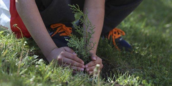 Bakanlıktan ağaç dikme rekoru hedefi