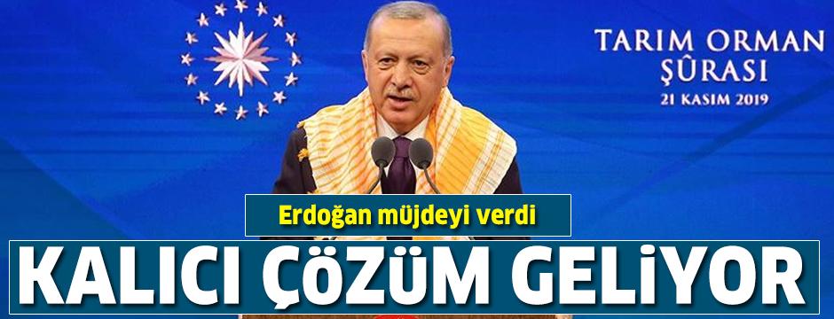 Cumhurbaşkanı Erdoğan'dan önemli açıklamalar: İlave 100 lira destek vereceğiz...