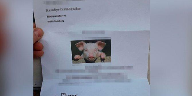 Almanya'da camiye domuz fotoğrafı bulunan mektup gönderildi