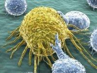 Bilim insanları tüm kanser türlerini yenmeyi başardı