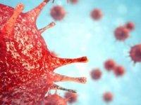DSÖ'den koronavirüs açıklaması: Hata yaptık!
