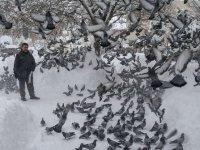 'Evladım' dediği kuşları 30 yıldır elleriyle besliyor
