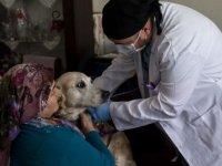 100. Yıl Hastanesi'nden 'EVDEKİ CAN DOSTLARA' özel hizmet