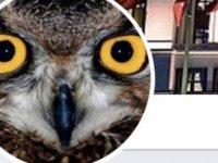 'Ankara Kuşu' gözatına alındı