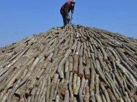 Mardinli aile ekmeğini mangal kömüründen çıkarıyor