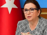 Bakan Pekcan duyurdu: İki ülkeye gümrük kapısı açıldı
