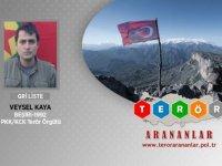 Bitlis'te öldürülen PKK'lı terörist, gri listede çıktı