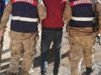 Barış Pınarı bölgesinde tarım alanlarını hedef alan YPG/PKK'lı terörist yakalandı