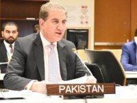 Pakistan Dışişleri Bakanı Kureyşi koronavirüse yakalandı