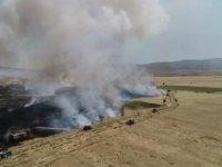 Kırşehir'de 500 dönüm buğday ve arpa ekili tarla kül oldu