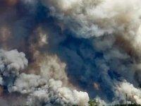 Ukrayna'da orman yangını: 6 ölü, 9 yaralı