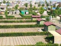 Başkan Demirtaş, yıkılacakları söylenen hobi bahçeleriyle ilgili çarpıcı değerlendirme