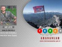 Gri listede aranan terörist Erzurum'da etkisiz hale getirildi