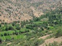 Hakkari'nin terörden temizlenen mahallelerinde 25 yıl sonra tarım yapılıyor