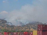 Aydın'da zeytinlik alanda yeniden başlayan yangın evlere yaklaştı