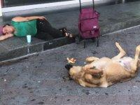 Taksim'de herkesin ilgisini çeken an