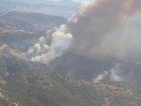 Güney Kıbrıs'ta çıkan yangın kontrol altına alınamıyor